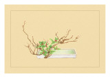 Plum and Chloranthus Brachystchys Wall Decal by Sofu Teshigahara
