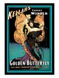 The Golden Butterfly: Kellar's Latest Wonder Wallstickers