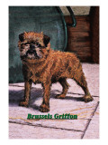 Typical Brussels Griffon Champion Wall Decal