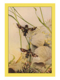 The Anthrax Fly Wall Decal by Edward Detmold