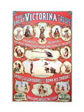 The Great Victorina Troupe Wall Decal