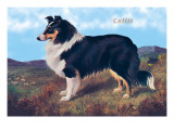 Reverend Hamilton's Collie Wall Decal