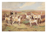 West Country Harriers Wall Decal by Thomas Ivester Llyod