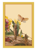 The Psyches Wall Decal by Edward Detmold