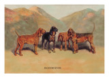 Bloodhounds Wall Decal by Thomas Ivester Llyod