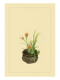 Daylily, Miscanthus, Japanese Glove Flower, and Patria Scabiasaegolia Wall Decal by Sofu Teshigahara