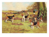Beagles Wall Decal by Thomas Ivester Llyod
