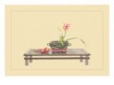 Daylily and Pomegranate Wall Decal by Sofu Teshigahara