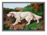 Typical English Setter Wall Decal