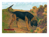 Bloodhound Champion Wall Decal