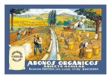 Abonos Organicos Wall Decal