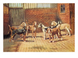 Welsh Hounds Wall Decal by Thomas Ivester Llyod