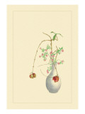 Pomegranate and Chrysanthemum Wall Decal by Sofu Teshigahara