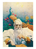 Captain Nemo Wallsticker af Newell Convers Wyeth