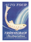 Auto Tour Trummelbach Wall Decal by Anton Trieb