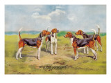 Orthodox Foxhounds Wall Decal by Thomas Ivester Llyod