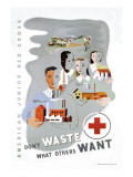 Don't Waste What Others Want: American Junior Red Cross Wall Decal by Dagmar Wilson