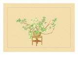 Pine and Rose Wall Decal by Sofu Teshigahara