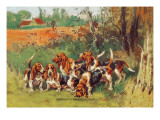 Artesien Normand Bassets Wall Decal by Baron Karl Reille