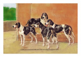 Gascon-Saintongeois Hounds of the Levesque Type Wall Decal by Thomas Ivester Llyod