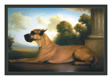 Recumbent Great Dane Wall Decal by Christine Merrill
