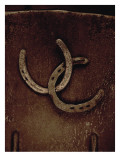 Lucky Horse Shoes on Rust Metallic Autocollant mural