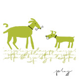 Dogs Playing Wall Decal