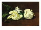 Still Life, White Peony Wall Decal by douard Manet