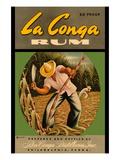 La Conga Rum Wall Decal