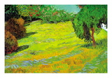 Sunny Lawn Wall Decal by Vincent van Gogh