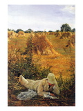 94 Degrees In The Shade Wall Decal by Sir Lawrence Alma-Tadema