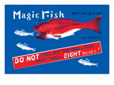 Magic Fish Wall Decal