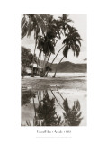 Coco Palms, Acapulco, 1932 Muursticker