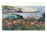 Poppies, Isle of Shoals Wall Decal by Childe Hassam