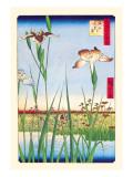 Iris Garden at Horikiri Wall Decal by Ando Hiroshige
