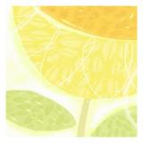 Sunflower Swirl Wallstickers