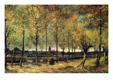 Lane with Poplars Autocollant mural par Vincent van Gogh