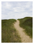 Sandy Beach Path over a Grassy Hill Wall Decal