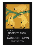 Book to Regent's Park Wall Decal