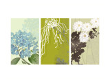 Eastern Floral Triptych Wall Decal