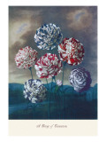 Group of Carnations Wall Decal