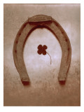 Lucky Horse Shoe on Dusty Rose Metallic I Wall Decal