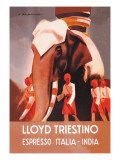 Lloyd Triestino Espresso Itali India Wall Decal by Marcello Dudovich