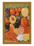 Hardy Northern Grown Fruits Wall Decal