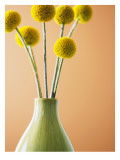 Yellow Bouquet Wall Decal