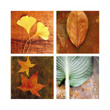 Leaves Arrangement Four Patch Wall Decal