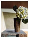 Hydrangea Rustic Vase Wall Decal