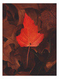 Fiery Leaf Wall Decal