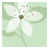 Soft Floral VI Wallstickers