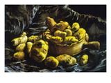 Earthen Bowls Wall Decal by Vincent van Gogh